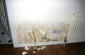 Water Damage Repairs Edinburgh - Property Restoration Services